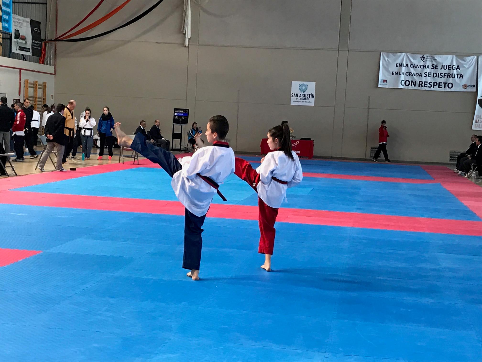 fisioterapia taekwondo