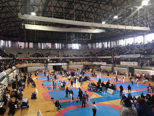 fisioterapia deportiva taekwondo